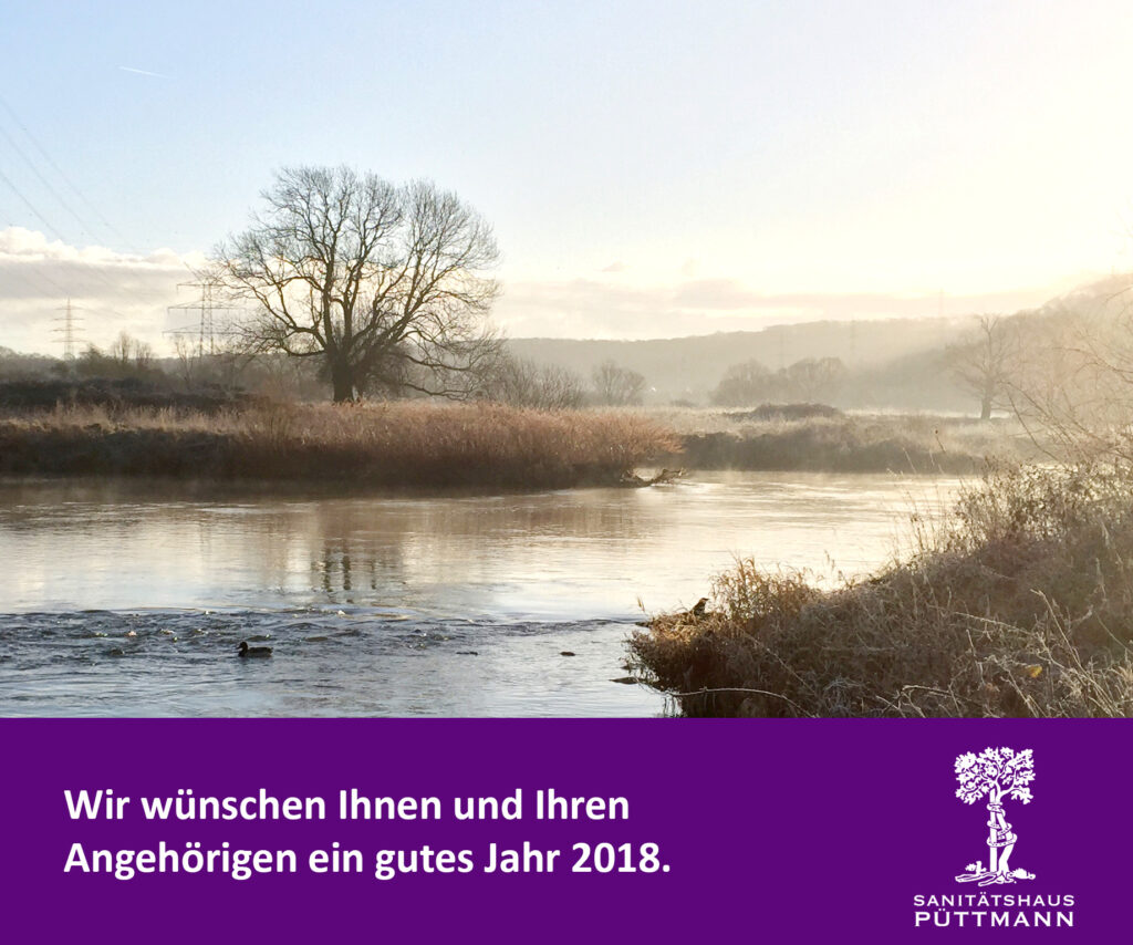 Neujahrsgruß 2018